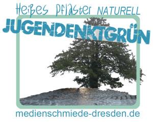 Ferienkurs Medien, Ferienangebot Mediencamp Dresden, Jourtnalistenschule für junge Medienmacher, Jugendenktgrün